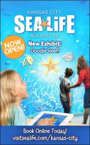 Experience the new Doodle Reef at Sea Life KC