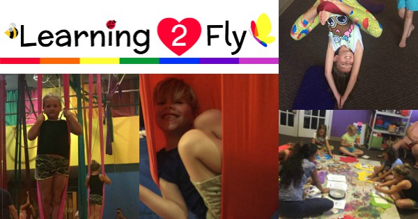 Learning 2 Fly