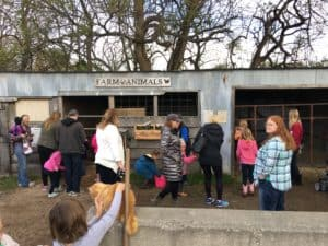 iFamilyKC Event Recap: Sunset Trails Stables